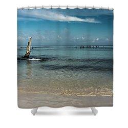 Mayan Shore 3 Shower Curtain