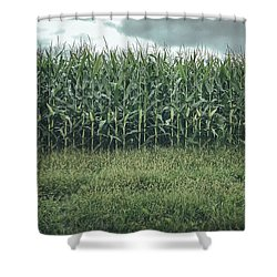 Maze Field Shower Curtain