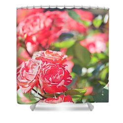 Shower Curtain featuring the photograph Memories Of Spring by Alex Lapidus