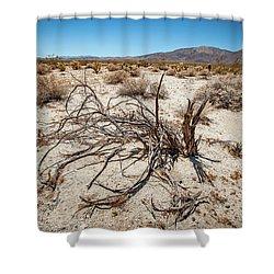 Mesquite In The Desert Sun Shower Curtain