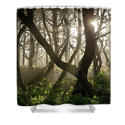 Mistical Morning  Shower Curtain