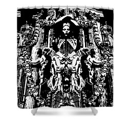 Momento Mori Shower Curtain