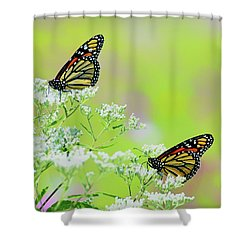 Monarchs In A Meadow Shower Curtain
