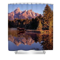 Moose Tetons Shower Curtain