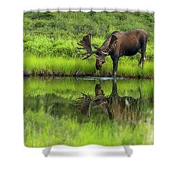Morning Isolation Shower Curtain