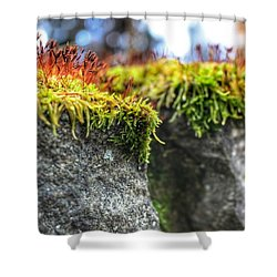 Nascent Shower Curtain