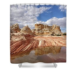 Natural Architecture Shower Curtain