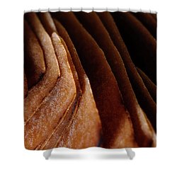 Natural Canyons Shower Curtain