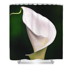 Natural Grace Shower Curtain