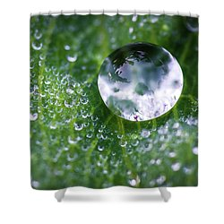 Natures Crystal Ball Shower Curtain