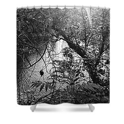 Shower Curtain featuring the photograph Naturescape Black And White by Rachel Hannah