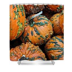 Nestled - Autumn Pumpkins Shower Curtain