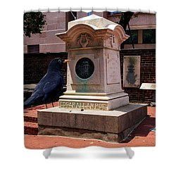 Shower Curtain featuring the photograph Nevermore Quoth The Raven by Bill Swartwout Fine Art Photography