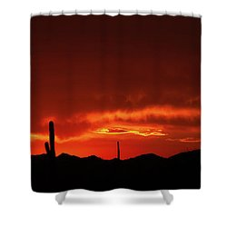 Shower Curtain featuring the photograph New Beginnings by Rick Furmanek