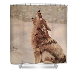 No Place To Roam Shower Curtain