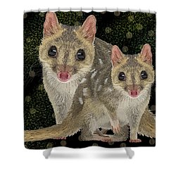Northern Quoll 3 Shower Curtain