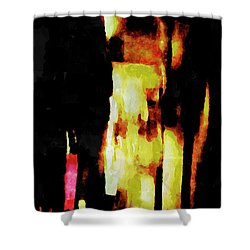 Shower Curtain featuring the painting Ny Verve 2 by Joan Reese