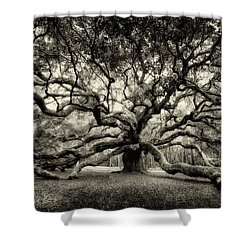 Oak Of The Angels - Sepia Shower Curtain