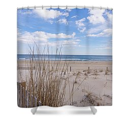 Ocean Dune Shower Curtain
