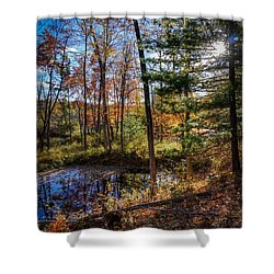 Shower Curtain featuring the photograph October Late Afternoon by Kendall McKernon