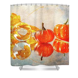 Shower Curtain featuring the photograph October Reflections by Randi Grace Nilsberg