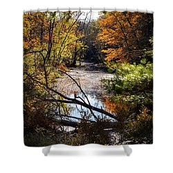 Shower Curtain featuring the photograph October Window by Kendall McKernon