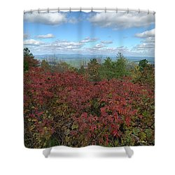 Shower Curtain featuring the photograph Oklahoma Scenic Trail  by Robin Maria Pedrero