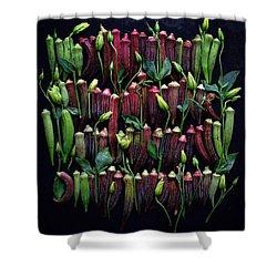 Okra Colors Shower Curtain