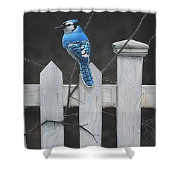 Old Picket Fence Shower Curtain