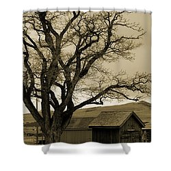 Old Shanty In Sepia Shower Curtain