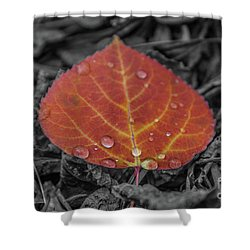 Orange Aspen Leaf Shower Curtain