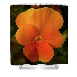Orange Cream Shower Curtain