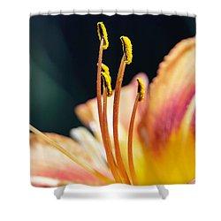 Orange Day Lily Stamen Shower Curtain