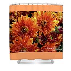 Orange Flowers No. 14 Shower Curtain