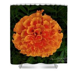 Orange Flowers No. O15 Shower Curtain