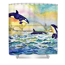 Orcas In Yaquina Bay Shower Curtain