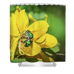 Orchard Bee Shower Curtain