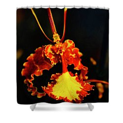 Orchid Study Four Shower Curtain