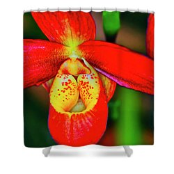 Orchid Study Seven Shower Curtain
