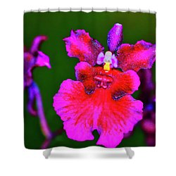 Orchid Study Three Shower Curtain