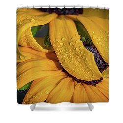 Shower Curtain featuring the photograph Overshadowing by Dale Kincaid