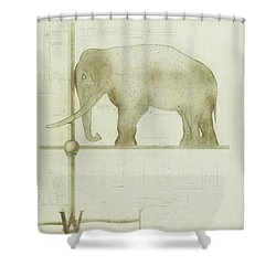 Pachyderm House, Philadelphia Zoo, Detail Of Weather Vane Shower Curtain