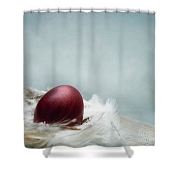 Painted Red Easter Egg In Bird Feather Nest Over Vintage Blue Ar Shower Curtain