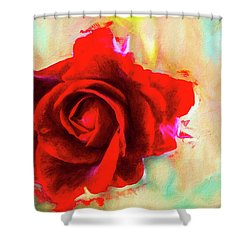 Painted Rose On Colorful Stucco Shower Curtain