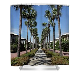 Palm Lined Pathway Shower Curtain