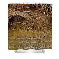 Palm Tree Straw 2 Shower Curtain