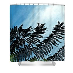 Palms Flying High Shower Curtain
