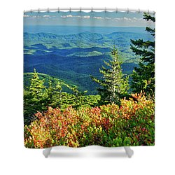 Parkway Tree Shower Curtain