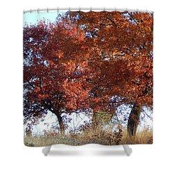 Passing Autumn Shower Curtain