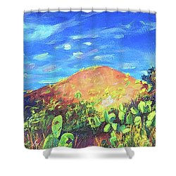 Pause On Mulholland Drive Shower Curtain